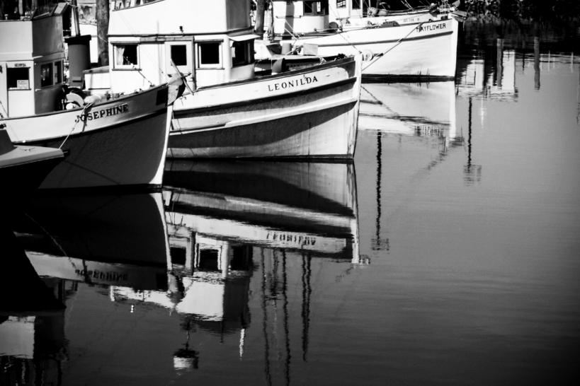 Boats SF 2018.jpg